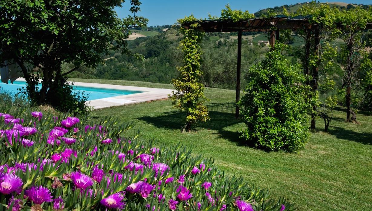 pool-flowers-marche-casal-dei-fichi